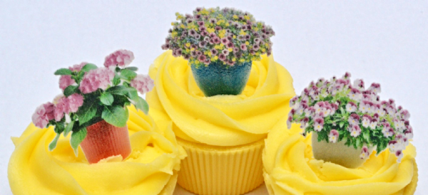 Edible cake toppers - Gardening flower tubs